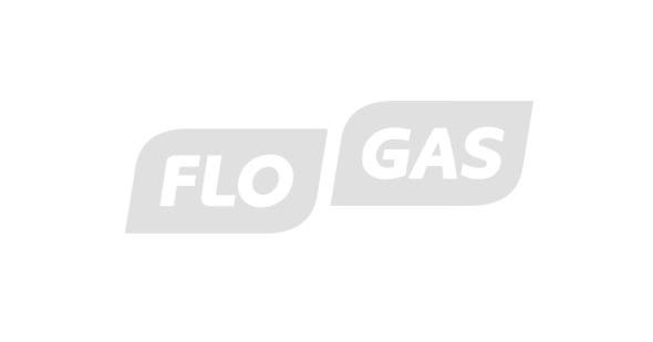 Flowgas logo